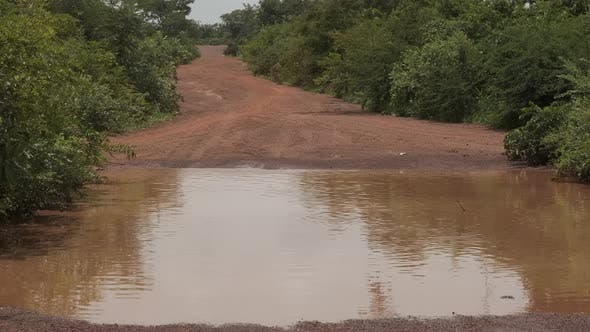 Thumbnail for Africa Mali Road Trees And Puddle