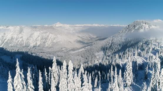 Thumbnail for Stevens Pass Ski Resort Aerial Overview From Top Of Mountain Skiing Tracks In Forest