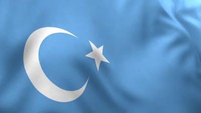 East Turkestan Flag / Uyghur Flag