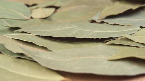 Dried leaves of bay leaf macro.