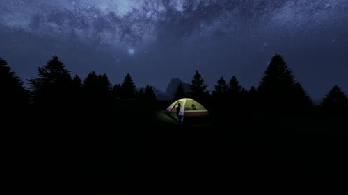 Tent Camp in Night Forest Area