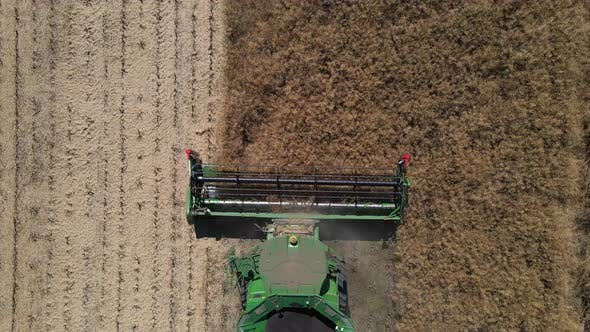 Thumbnail for Agricultural Machinery Reaps The Harvest