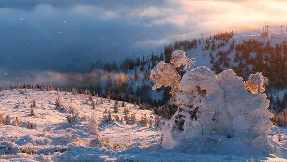 Thumbnail for Winter Snow Landscape