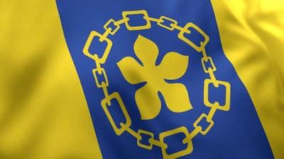 Hamilton City Flag (Canada)