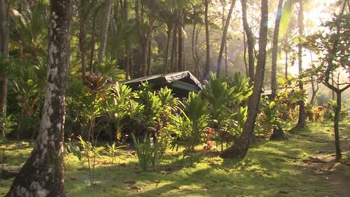 Recreation Corcovado National Park in Winter Ecotourism Camp Lodging Jungle