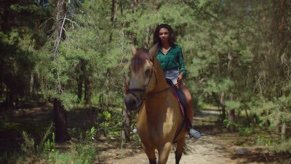 Thumbnail for Lovely Female Riding Brown Horse on Rural Road