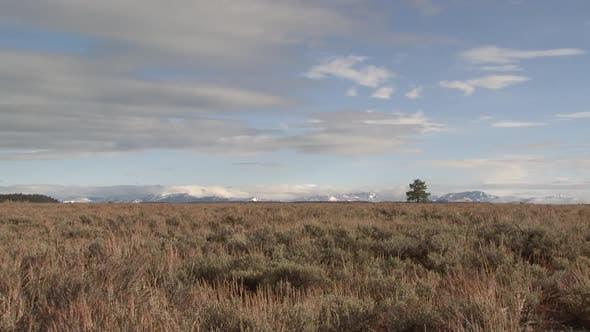 Prairie in Autumn in Grand Teton National Park Wyoming