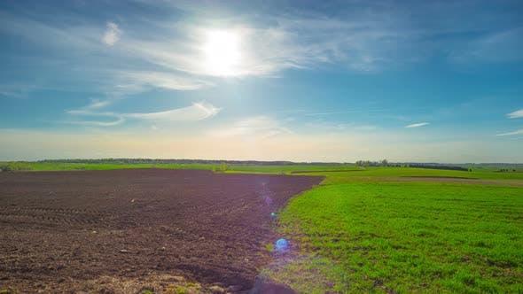 Frühlingsfeld und die Sonne