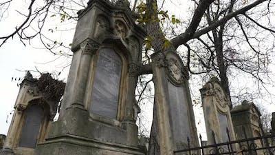 Jewish tombstones under a tree