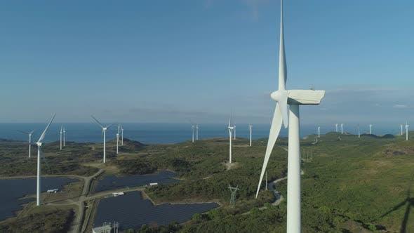Solar Farm with Windmills