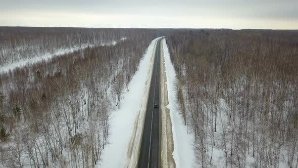 Thumbnail for Winter Country Forest Road