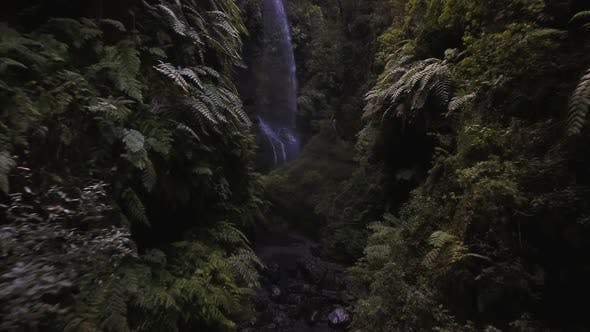 Cover Image for Aerial of Mysterious Jungle Waterfall