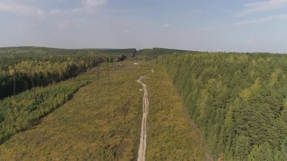 Aerial view of Power pylons and high voltage lines in forest