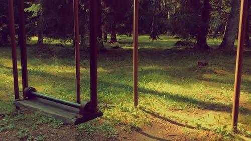 Upside down swings with no people