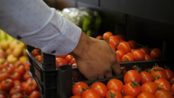Thumbnail for Hands Placing Box with Ripe Tomatoes at Store