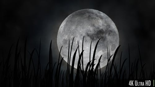 4K Full Moon or Harvest Moon in the Fall