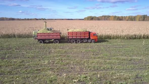 Thumbnail for Side View Corn Combine with Truck Gathers Corn Mass