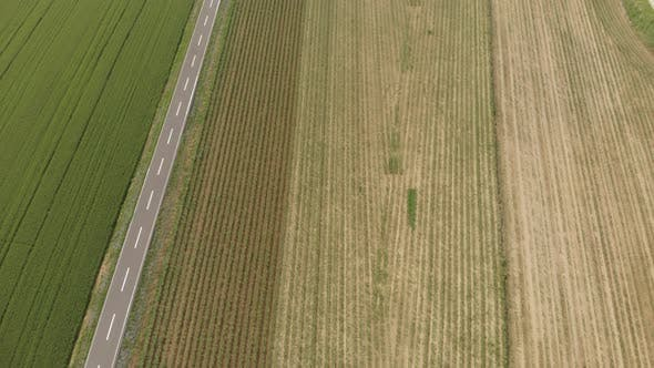 Thumbnail for Aerial: tractor working on cultivated fields farmland, agriculture occupation, top down view