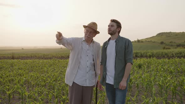 Farmers Stand and Chat on the Green Field