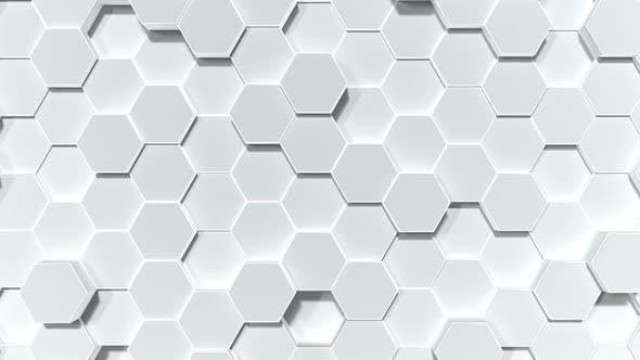 White hexagon honeycomb shape moving up down randomly background