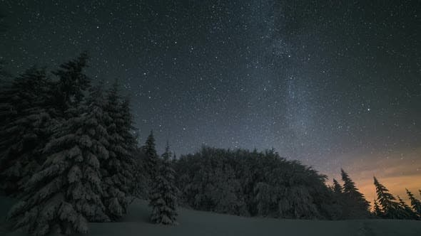 Cover Image for Christmas Winter Night Landscape with Stars Sky Moving over Snowy Trees