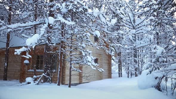 Thumbnail for House in the Forest and Snowfall