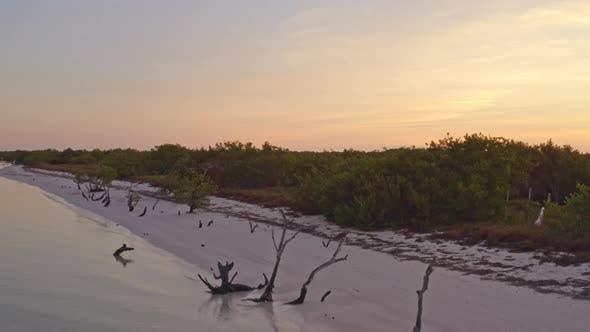 Wetlands Mexico
