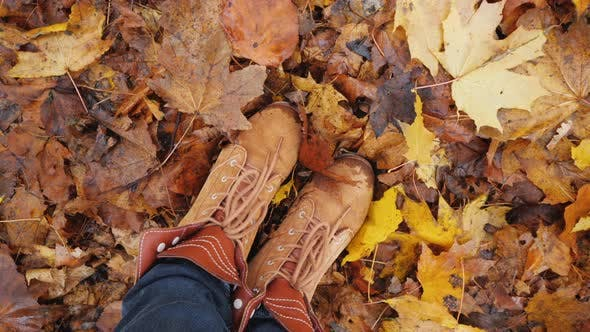 Thumbnail for Feet in Autumn Boots on Fallen Autumn Leaves, the Camera Rotates