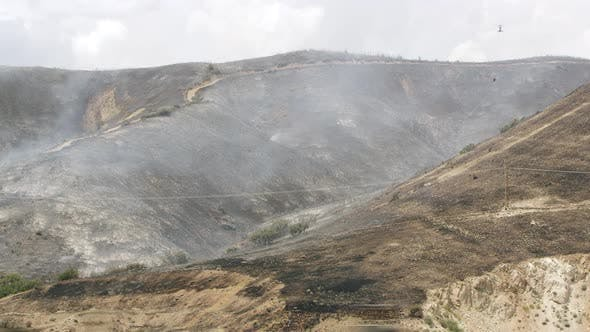 View of scorched landscape after wildfire