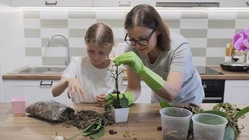 Mother with Daughter Child Planting Orchid Flowers