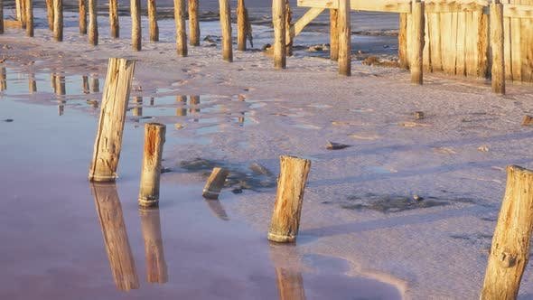 Thumbnail for Wooden Pillars On A Pink Salt Lake 2
