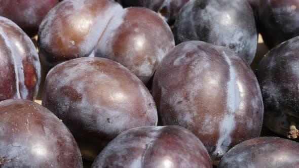 Thumbnail for Purple plum fruit from genus Prunus  4K video