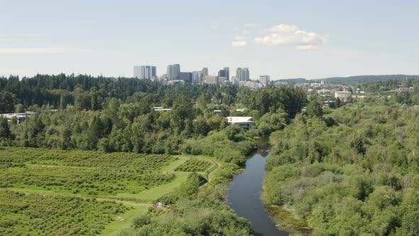Cover Image for Bellevue Washington Aerial Rising Above Mercer Slough Blueberry Farm And Urban Skyline
