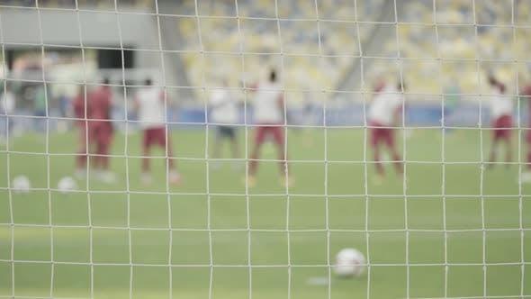 Training Football Soccer Players at the Stadium. Warm Up. Olimpiyskiy. Kyiv. Ukraine