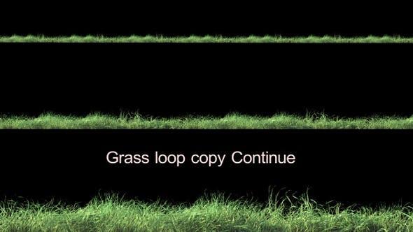Grasschleife Weiter