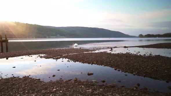 Thumbnail for Sunrise Over a Lake Shoreline