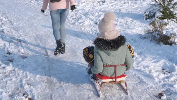 Playful sledding time.