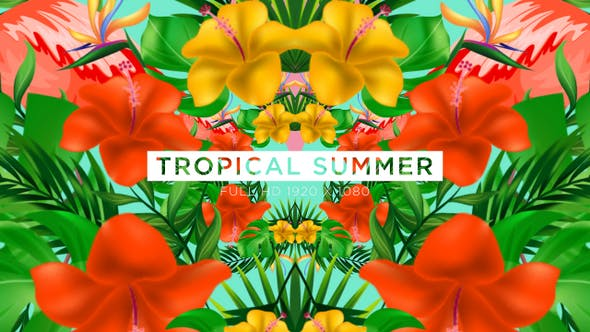 Thumbnail for Tropical Summer Paradise Vj Loops Fond
