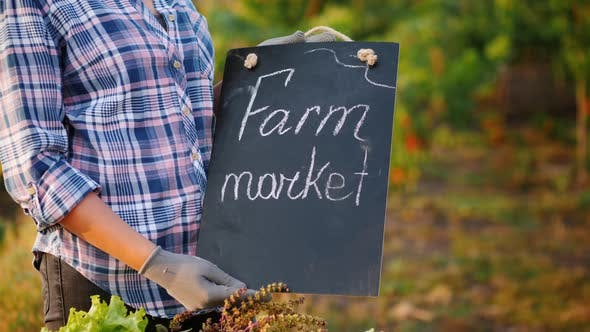 Thumbnail for Farmer's Hands Holding a Sign. Farmers Market Near the Counter with Seasonal Vegetables