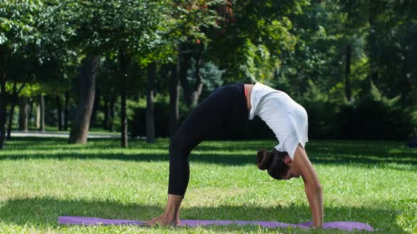Thumbnail for Women Practicing Yoga in the Park Background