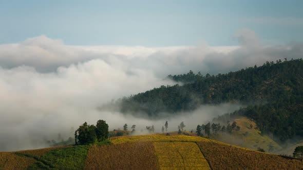 Thumbnail for Fog Landscape Mountain