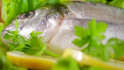 Raw Fresh Fish Food