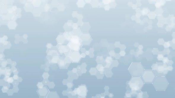 Thumbnail for Honeycomb Digital