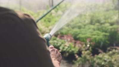 Gardener Watering Plants With Garden Hose