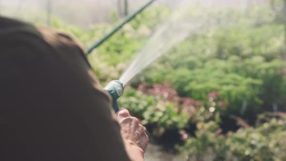 Gardener Watering Plants With Garden Hose