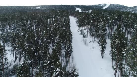 Cover Image for Snowy Forest And Mountains Aerial View