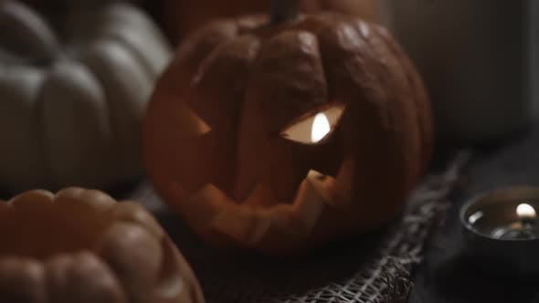 Thumbnail for Jack O Lantern Carved Pumpkins