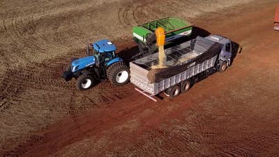 Tractor Dumping Soybean Seeds in Truck