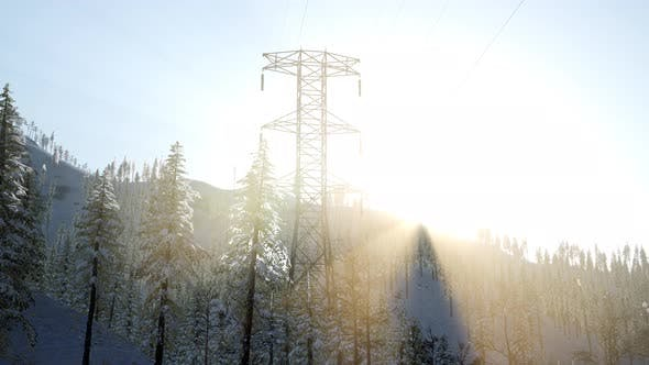 Thumbnail for Electric Line at Sunrise in Snow Covered Forest