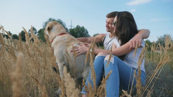 Cover Image for Young Couple Sitting on Grass at Meadow and Stroking His Labrador. Family Spends Time Together